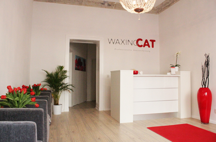Waxing Cat